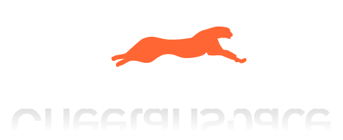 Cheetahspace business web hosting